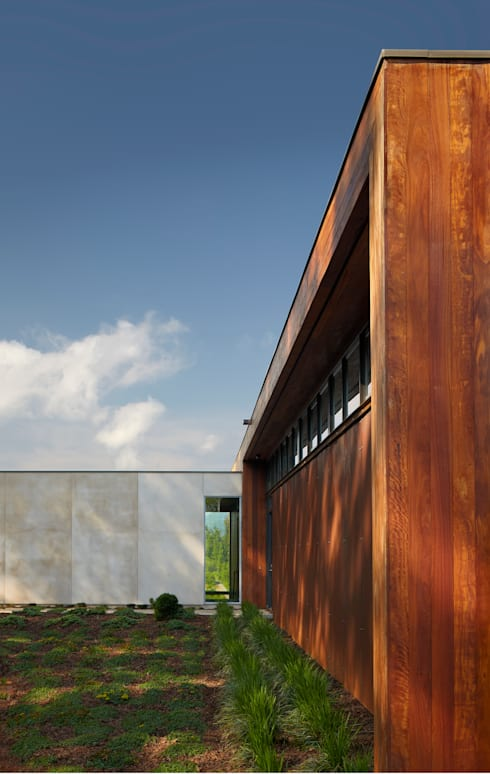 Leicester House:  Houses by SPG Architects