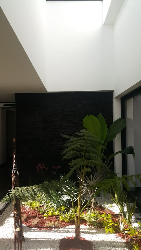 Jardin interior : Jardines de estilo  por Camilo Pulido Arquitectos