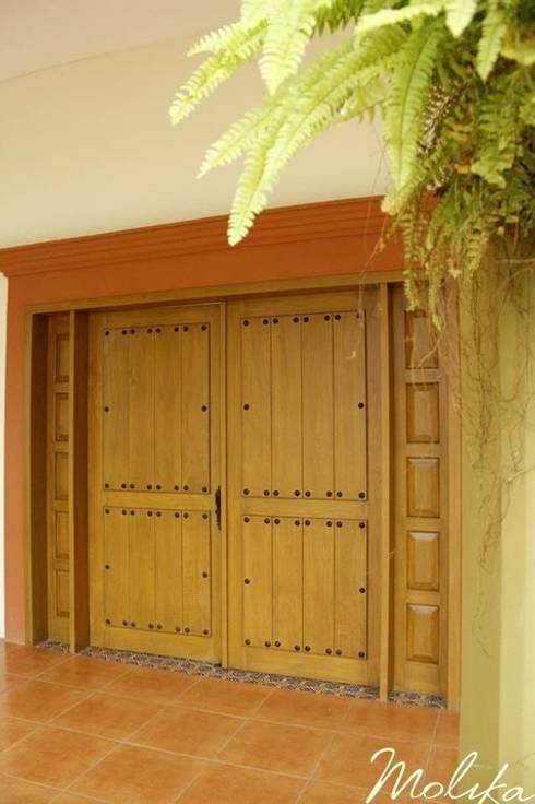CASA CEDRO: Casas de estilo colonial por MOLIKA