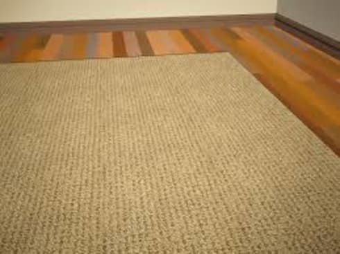 Carpet cleaning:   by Carpet cleaners auckland