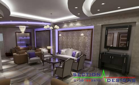 التجمع الخامس:  منازل تنفيذ section designs