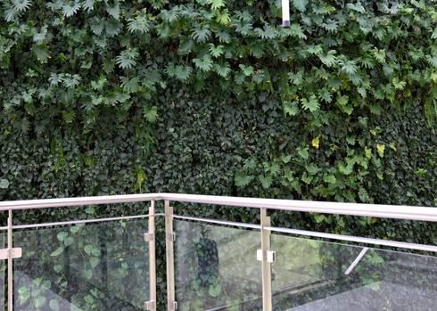 Netcare Muldersdrift:  Hospitals by Modiwall Vertical Gardens