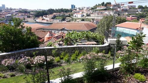 Rua Monte dos Judeus:   por Jardins do Paço