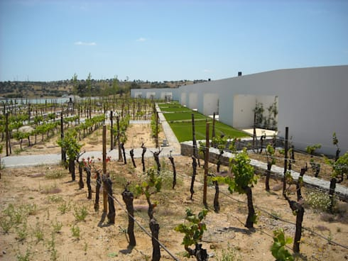 L'And Vineyards:   por Jardins do Paço