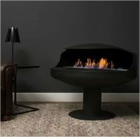 Delux Range: modern Living room by EcoFlames