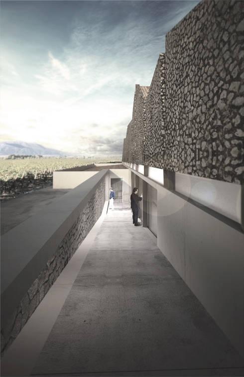 Diseño Planta Vitivinícola Vinzeta, Villa De Leyva, Colombia:  de estilo  por Estudio 111 Arquitectos