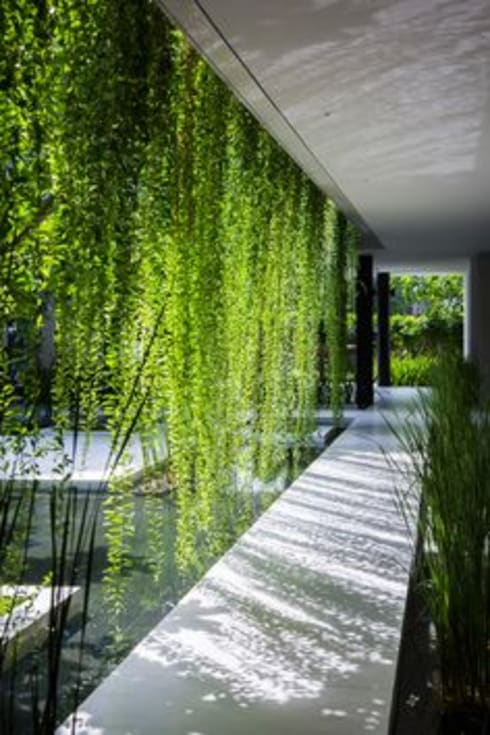 Interior landscaping by deco paysage concept Marbella
