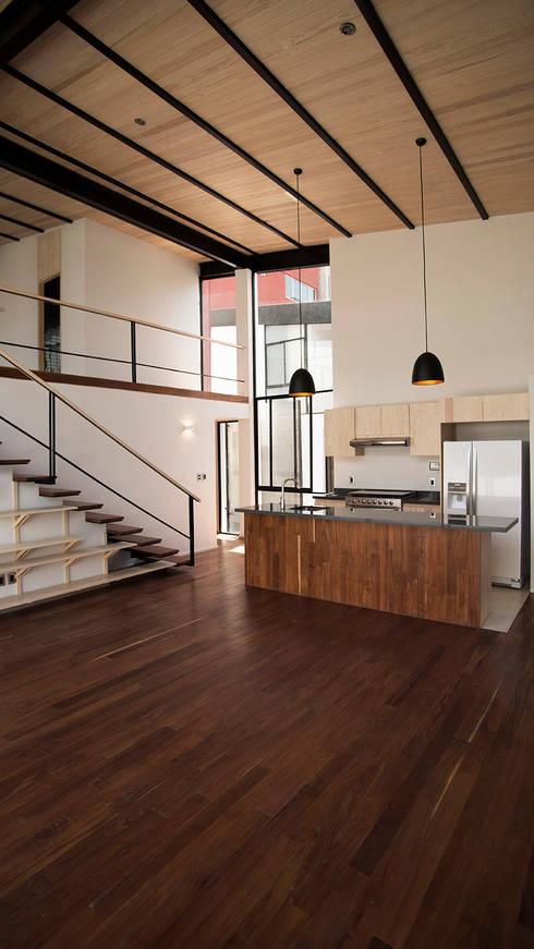 PH: Comedores de estilo moderno por Wolff Arquitectura