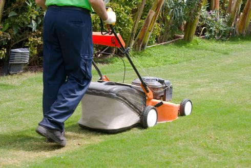 Lawn Care & Maintenance:   by Handyman Pretoria