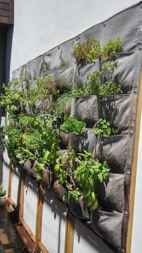 Four 10 - pocket panels alongside each other:  Balconies, verandas & terraces  by Vertical Veg (Pty) Ltd