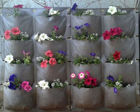 Just flowers:  Balconies, verandas & terraces  by Vertical Veg (Pty) Ltd
