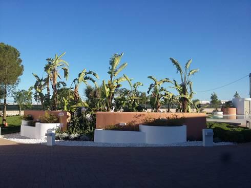 Progetto giardino con piscina di arch stefanelli for Progetto giardino mediterraneo