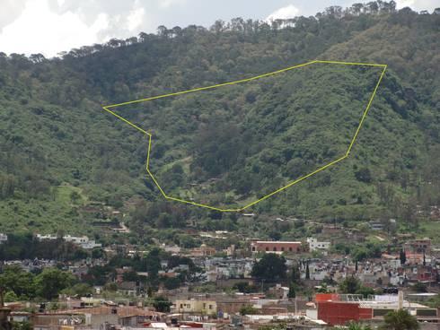 Coto Selva :  de estilo  por Lobato Arquitectura