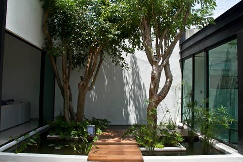CASA DEL ARBOL: Jardines de estilo moderno por Vau Studio