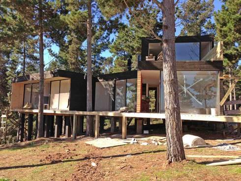 Casa del Bosque: Casas de estilo moderno por Nido Arquitectos