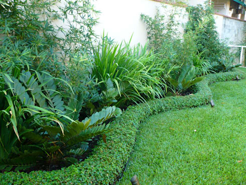 PRIVATE RESIDENCE—PANAMA CITY: tropical Garden by TARTE LANDSCAPES
