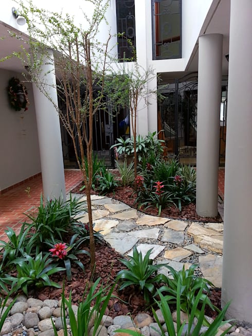 PRIVATE RESIDENCE—PANAMA CITY: modern Garden by TARTE LANDSCAPES