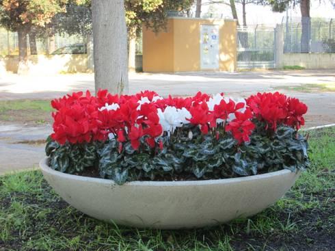 Ciotole da giardino di p m c srl homify - Comporre un giardino ...