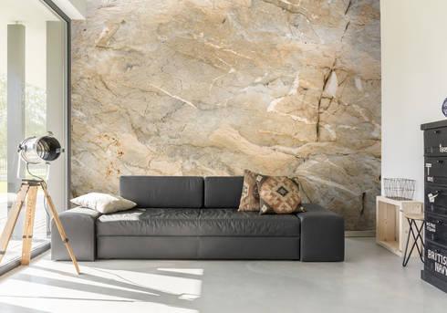Natural Marble Wall Mural