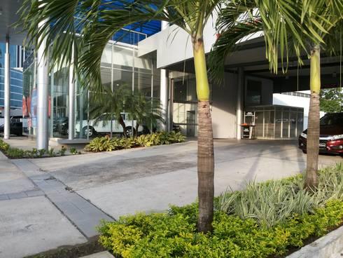 BAHIA MOTORS AT COSTA DEL ESTE—PANAMA CITY: tropical Garden by TARTE LANDSCAPES
