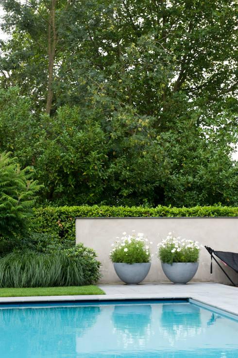 Luxe tuin met zwembad door jaap sterk hoveniers homify for Afmetingen zwembad tuin