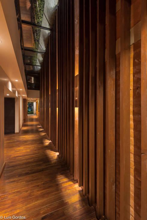 CASA C260: Pasillos y recibidores de estilo  por HDA: ARQUITECTURA BIOCLIMATICA