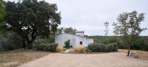 Jardim com piscina natural: Jardins ecléticos por Atelier Jardins do Sul