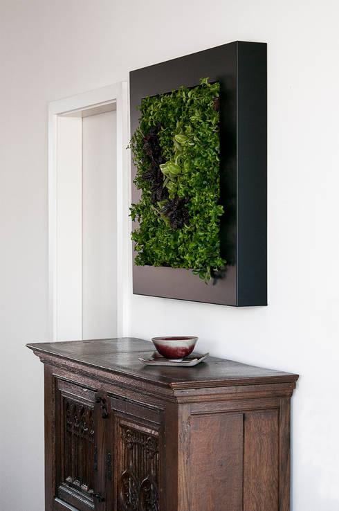 Interior landscaping تنفيذ Vertical Green Design