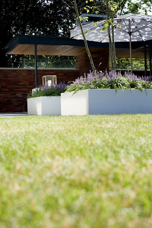 Strak gazon.:  Tuin door Heart for Gardens.