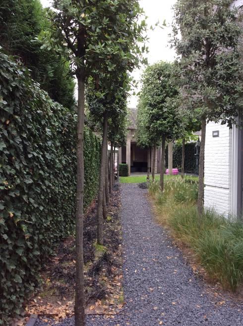Aanpassing tuinontwerp t.b.v aanbouw:  Tuin door Studio Inside Out