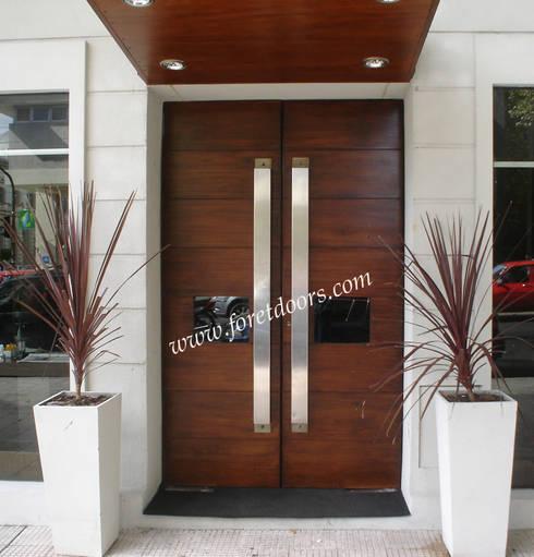 Modern double entry door with custom stainless steel pulls:  Windows & doors  by Foret Doors