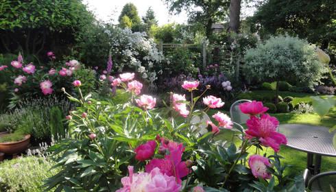 my cheshire garden peonies caroline benedict smith garden design cheshire classic garden by - Garden Design Cheshire