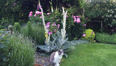 Attrayant Terraços Por Caroline Benedict Smith Garden Design Cheshire