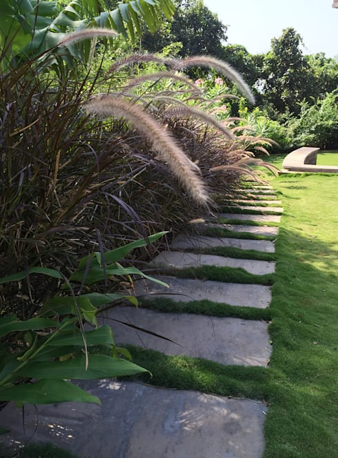 Stepping stone pathway: modern Garden by Land Design landscape architects