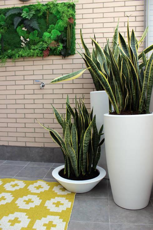 Jard n vertical de interior de teresa jara estudio de for Jardin vertical terraza