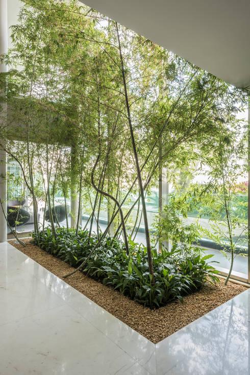 Residência Nova Lima : Jardins de inverno  por Andréa Buratto Arquitetura & Decoração