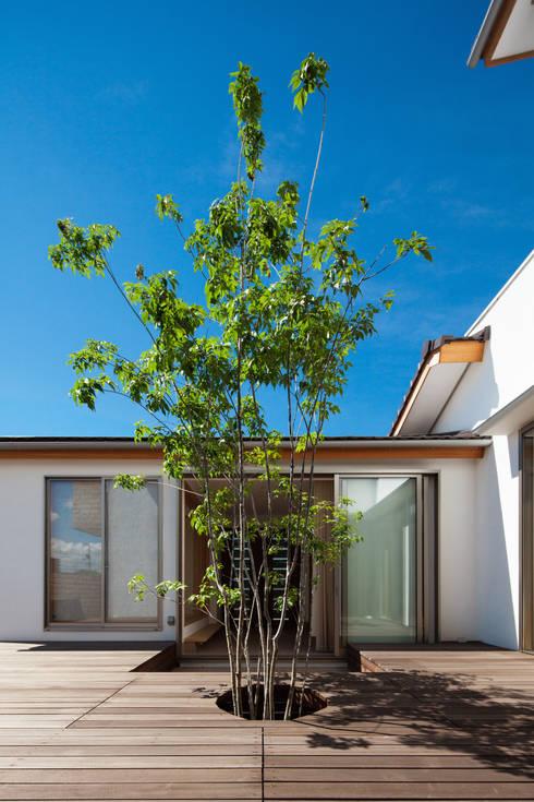 中庭とアオダモ: 株式会社seki.designが手掛けた庭です。