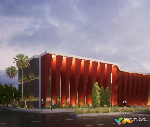 INSTITUCIONAL: Oficinas y Tiendas de estilo  por Elementum Arquitectos SAS