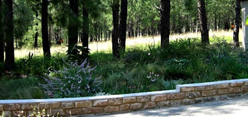 Large Country Garden: country Garden by Young Landscape Design Studio