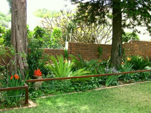 Large Family Garden: modern Garage/shed by Young Landscape Design Studio