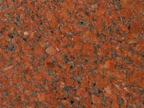 แดงอินเดียดอกเล็ก B :   by SIAMTAK CO., LTD.