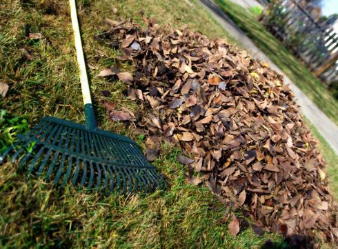 Garden Refuse Removal:   by Johannesburg Tree Felling