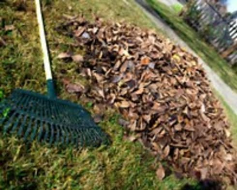 Refuse removal project:   by Pretoria Tree services