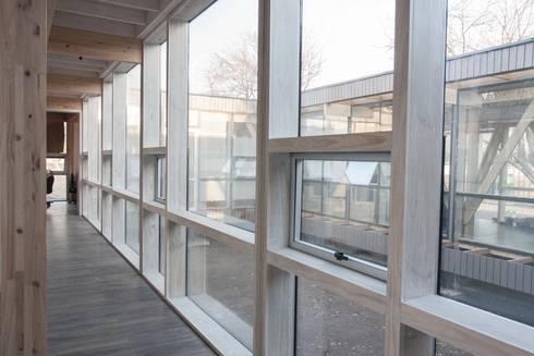 Oficinas Chicureo: Pasillos y hall de entrada de estilo  por MACIZO Arquitectura y Construcción Limitada
