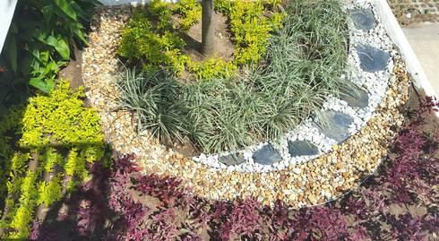 Jardines laboratorio Metropolitano – Barranquilla: Jardines de estilo tropical por ecoexteriores