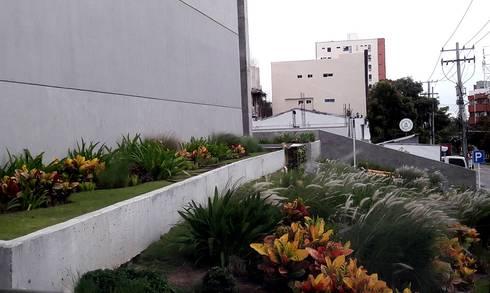 Jardines Hotel Movich - Barranquilla: Jardines de estilo tropical por ecoexteriores