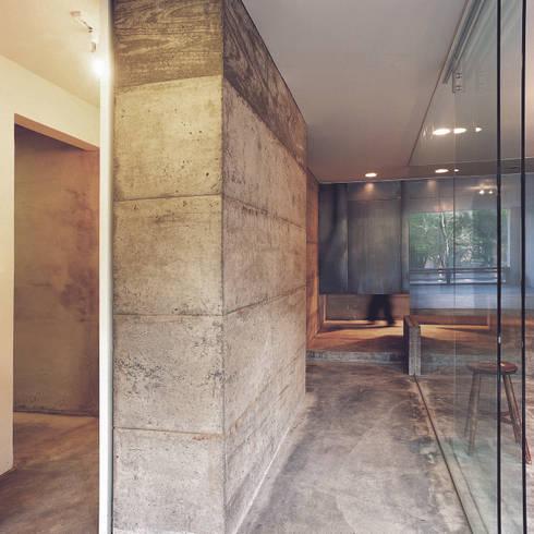 以一條中間甬道自陽台串聯底端的曬衣間與廚房,導引室內對流成為貓群嬉耍空間,就此撥開東西兩廂,將空間一分為二。:  走廊 & 玄關 by 本晴設計