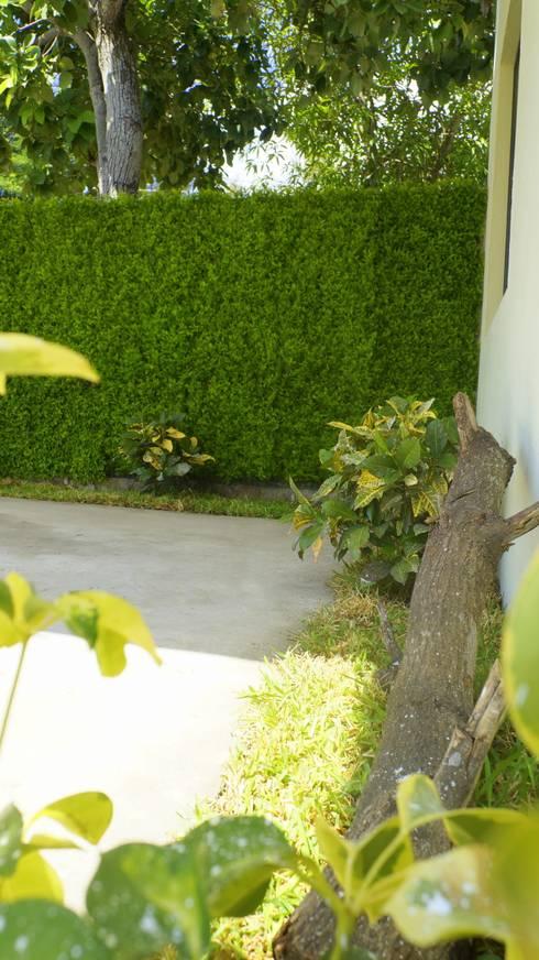 Paisajismo muros verdes jardines de 3hous homify for Jardines verdes