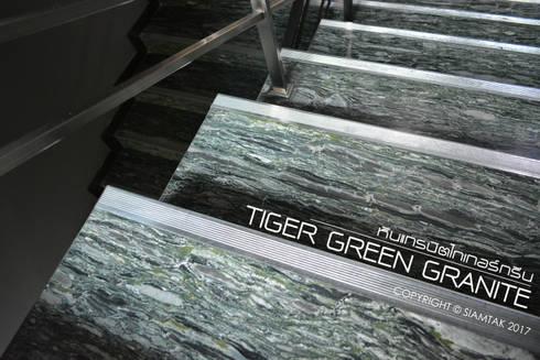 Tiger Green Granite:  ระเบียงและโถงทางเดิน by SIAMTAK CO., LTD.
