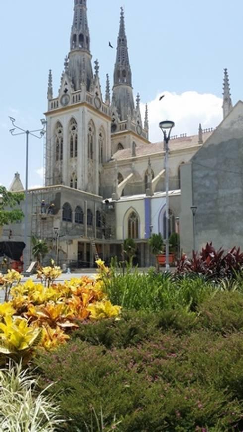 PLAZA SAN ROQUE - BARRANQUILLA: Jardines de estilo tropical por BRASSICA SOLUCIONES PAISAJISTICAS S.A.S.